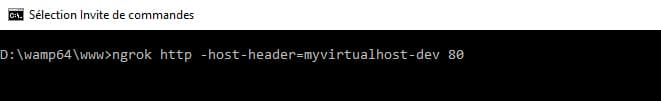 Ngrok virtual host