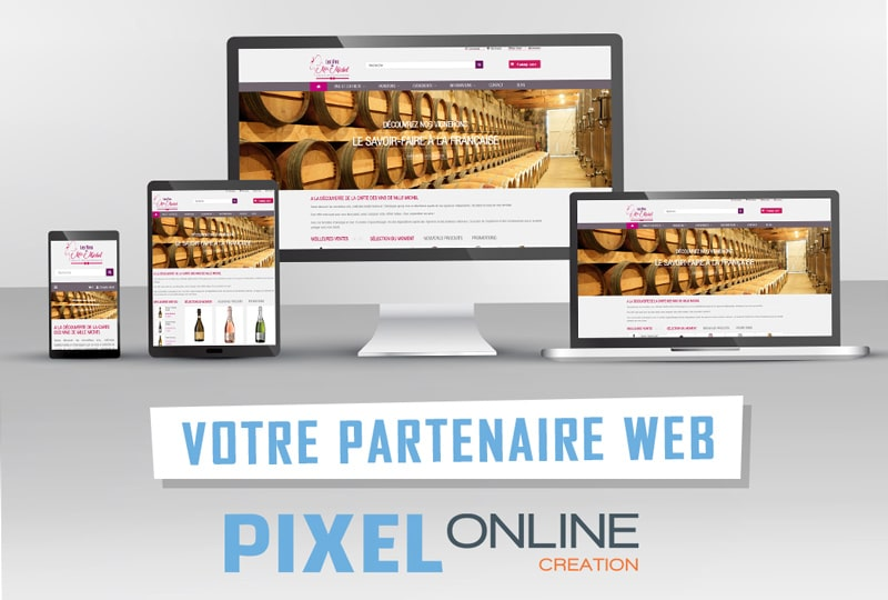 Création du site Web E-commerce : LesvinsdeMlleMichel